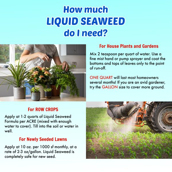 Nature's Lawn and Garden Liquid Seaweed how much do i need