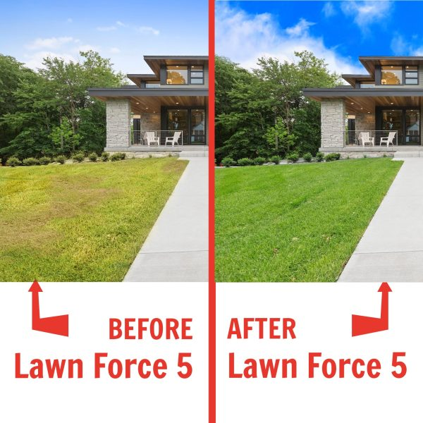 Nature's Lawn Lawn Force 5 before and after
