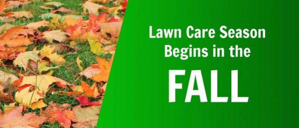 Lawn Care Fall