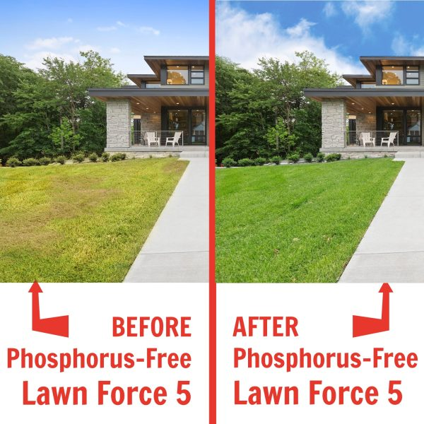 Nature's Lawn and Garden Phosphorus Free Lawn Force 5 before and after