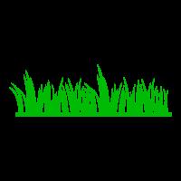 Promotes Greener Grass
