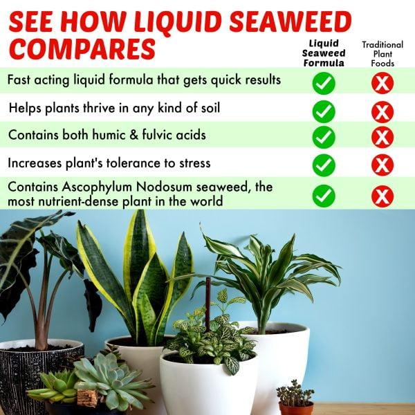 Nature's Lawn and Garden Liquid Seaweed comparison
