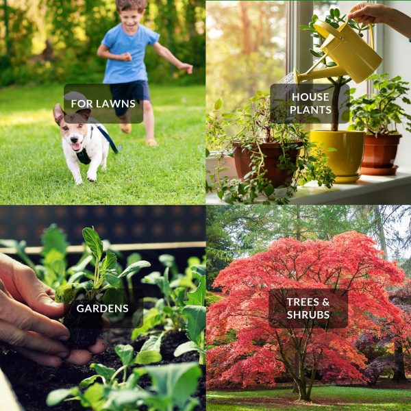 Nature's Lawn and Garden Liquid Iron use cases