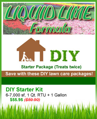 diy-liquid-lime