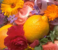 fruit_flowers